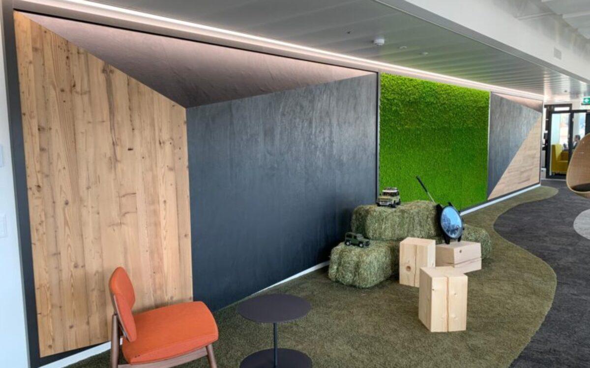 Innenausbau Showroom und Büros